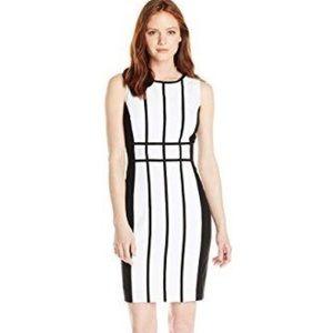 CALVIN KLEIN Sheath Dress, White and Black, Size 6
